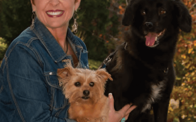 7 dos and don'ts for starting pet death-care services
