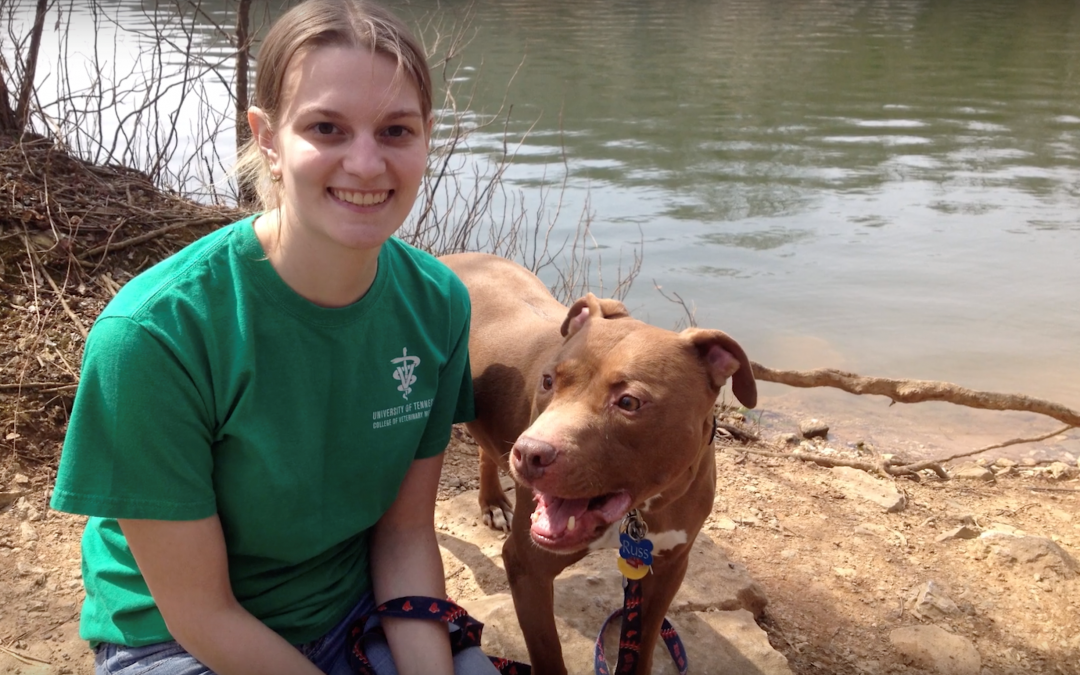 The Rescue Pitbull that Rescued Jocelyn, Instead